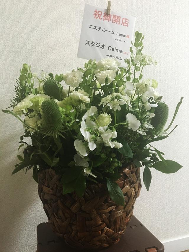 オープンのお花